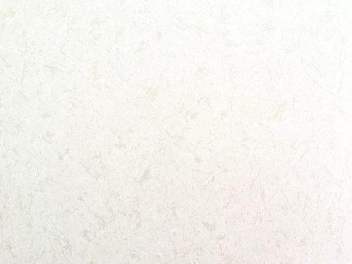 写真ACの和紙の写真